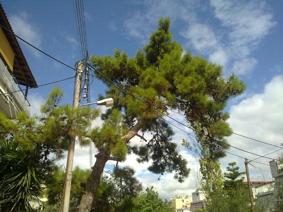 Nokia N97 photo sample 11