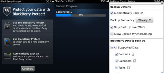 BlackBerry Protect application