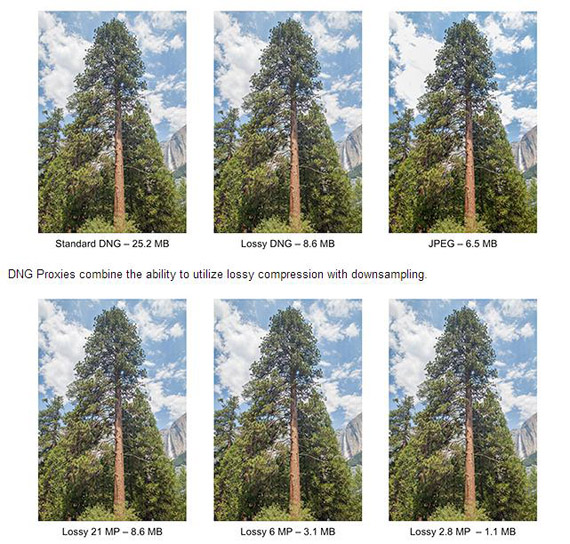 Adobe DNG 1.4, Πρότυπο αποθήκευσης εικόνων σε υψηλή ανάλυση χωρίς μεγάλες απαιτήσεις όγκου