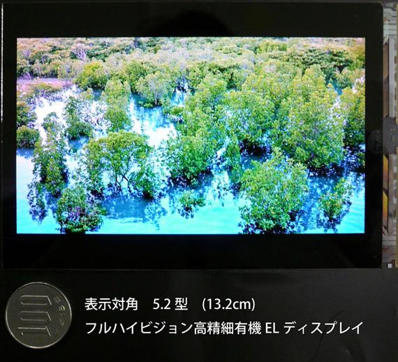 Japan Display 5.2 FHD