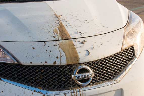 Nissan ultra ever dry-self cleaning car