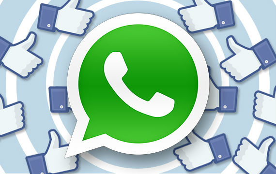 whatsapp-500-users-570