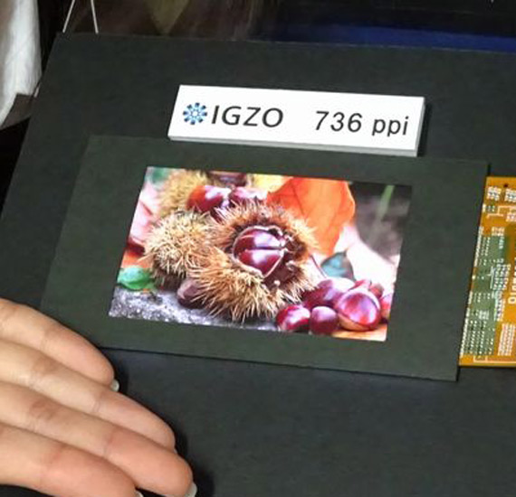 Sharp Develops 736ppi IGZO LCD Panel