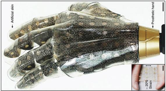 artificial-skin-01-570