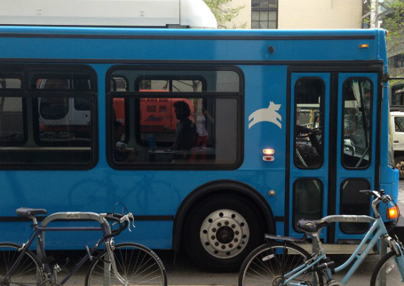 leap buss