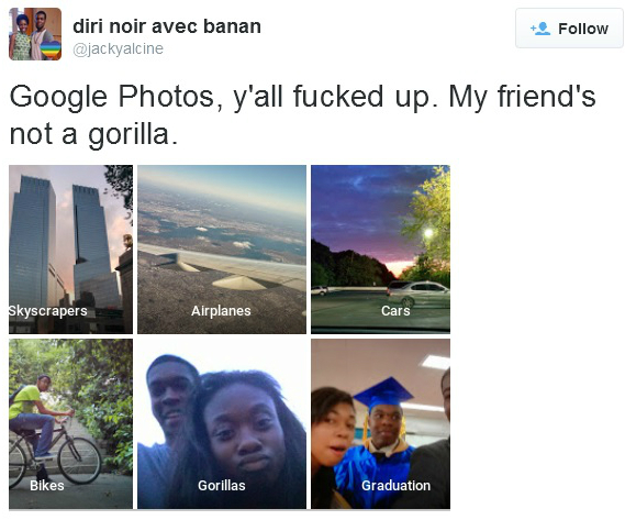 Google Photos Gorilla