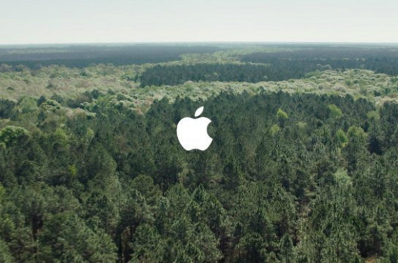 apple forests