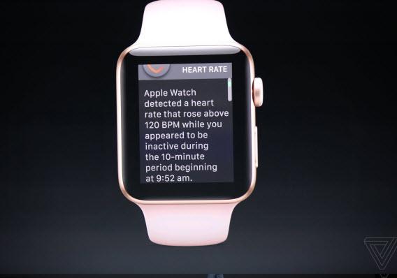 apple watch heart rate detector