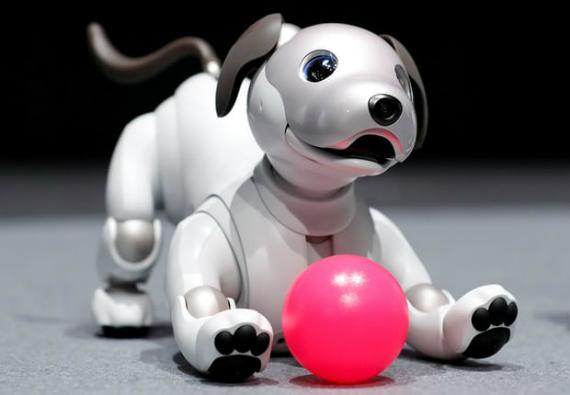 Sony Aibo: Ο νέος σκύλος ρομπότ με τιμή 1700 δολάρια