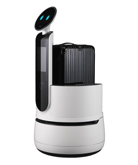 LG Porter Robot