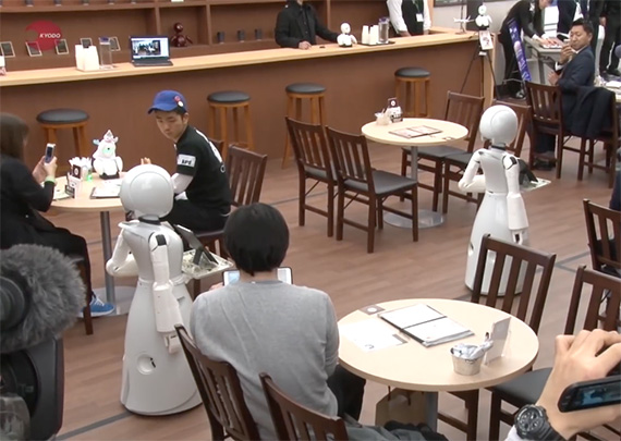 cafe robot waiters1