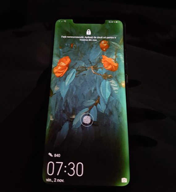mate20pro screen problem1