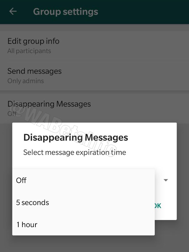 WhatsApp Beta Disappearing Messages