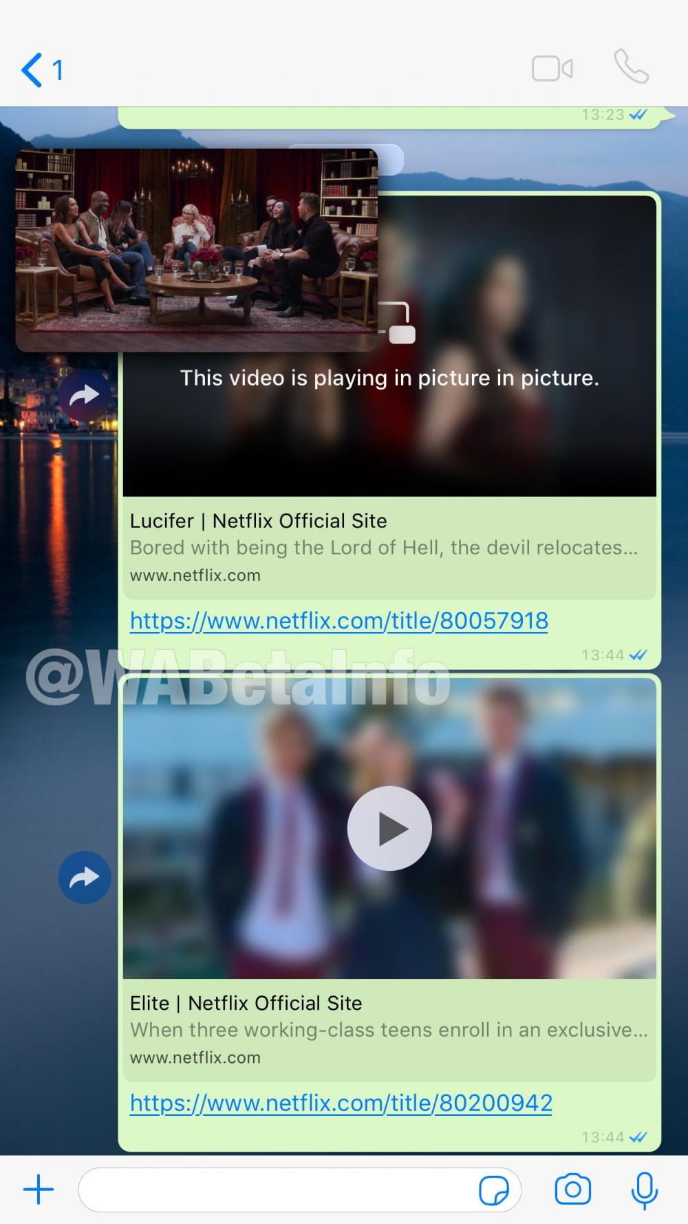 WhatsApp Plays Netflix Videos