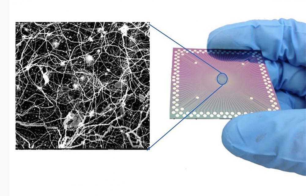 Συσκευή νανοκλίμακας που συμπεριφέρεται σαν το ανθρώπινο μυαλό